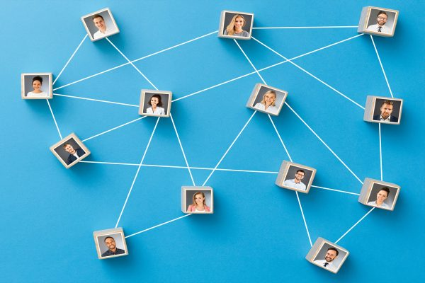 Third sector networking and information sharing